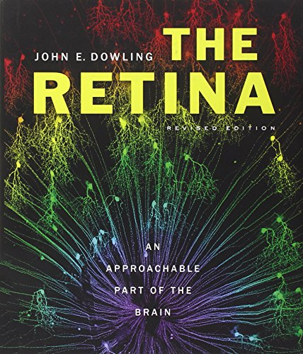 9780674061545: The Retina: An Approachable Part of the Brain, Revised Edition