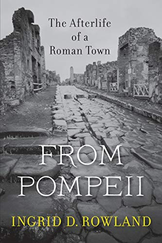 9780674088092: From Pompeii: The Afterlife of a Roman Town