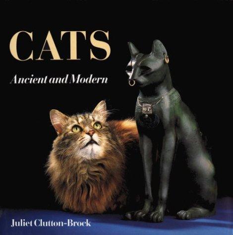 9780674104075: Cats - Ancient & Modern