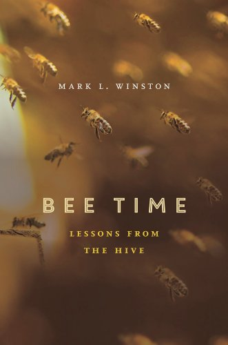 9780674368392: Bee Time: Lessons from the Hive