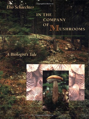 9780674445550: In the Company of Mushrooms: A Biologist's Tale
