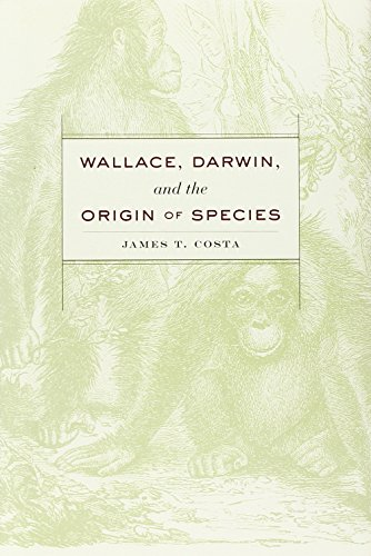 9780674729698: Wallace, Darwin, and the Origin of Species