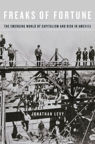 9780674736351: Freaks of Fortune: The Emerging World of Capitalism and Risk in America