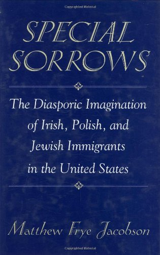 Special Sorrows: The Diasporic Imagination of Irish, Polish, and Jewish Immigrants in the United ...