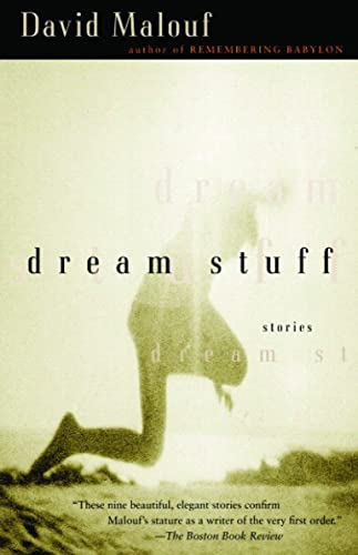 9780676973020: Dream Stuff