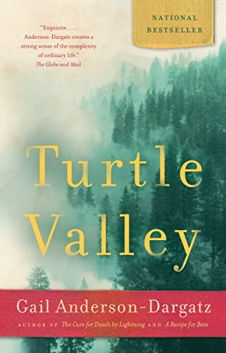 9780676978865: Turtle Valley