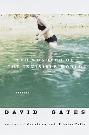 The Wonders of the Invisible World: Gates, David