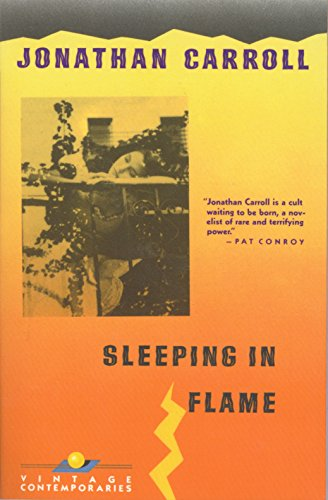 9780679727774: Sleeping in Flame (Vintage Contemporaries)