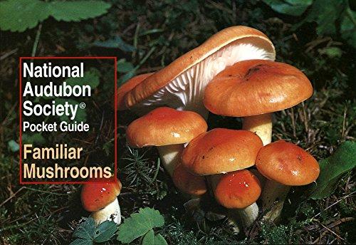 National Audubon Society Pocket Guide: Familiar Mushrooms: NATIONAL AUDUBON SOCIETY