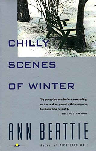 9780679732341: Chilly Scenes of Winter (Vintage Contemporaries (Paperback))