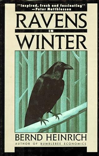 Ravens in Winter: Heinrich, Bernd