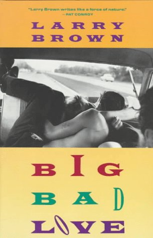 9780679734918: Big Bad Love: Stories