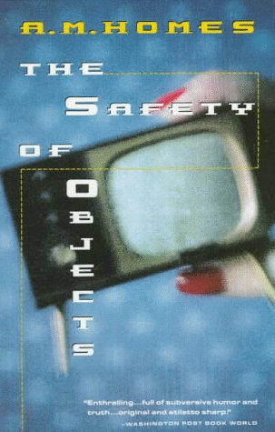 9780679736295: Safety of Objects (Vintage Contemporaries)