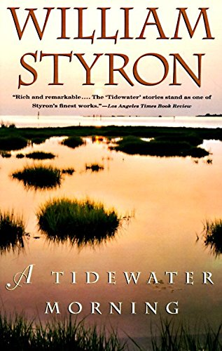9780679754497: A Tidewater Morning