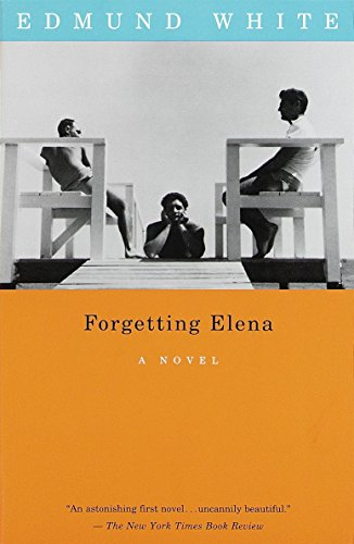 9780679755739: Forgetting Elena (Vintage International)