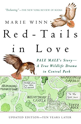9780679758464: Red-Tails in Love: A Wildlife Drama in Central Park (Vintage Departures)