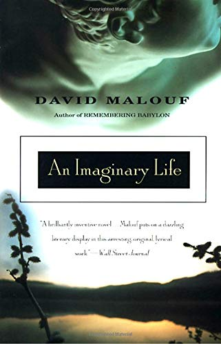 9780679767930: An Imaginary Life (Vintage International)