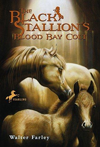 9780679813477: The Black Stallion's Blood Bay Colt: (Reissue)