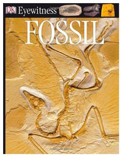 9780679904403: Fossil (Eyewitness Books)