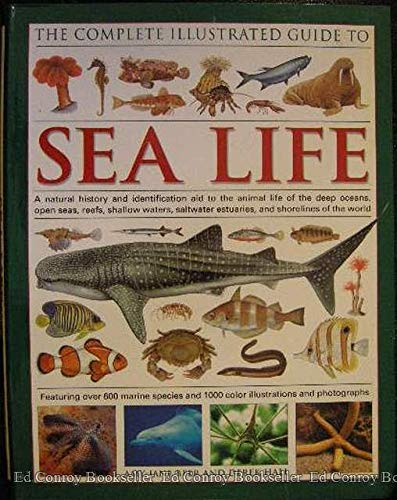 Sea Life (The Complete Illustrated Guide to): Beer, Amy-jane; Hall,