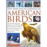9780681643048: The New Encyclopedia of American Birds