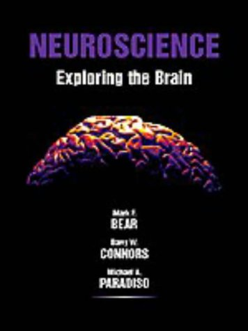 9780683004885: Neuroscience: Exploring the Brain