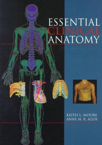 9780683061284: Essential Clinical Anatomy - AbeBooks - Keith L ...
