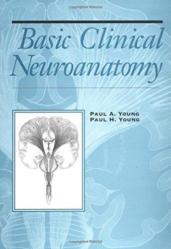 Basic Clinical Neuroscience - Isbn:9780781753197 - image 10
