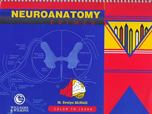 9780683300673: Neuroanatomy Primer: Color to Learn