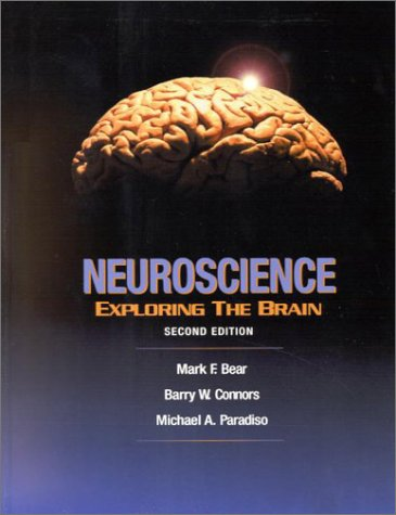 9780683305968: Neuroscience: Exploring the Brain
