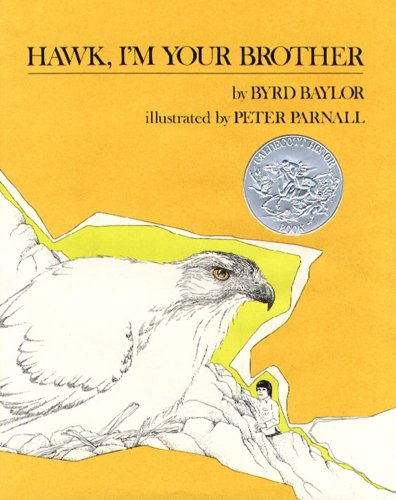 9780684145716: Hawk, I'm Your Brother