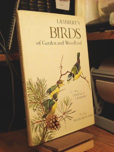 9780684147956: Lambert's Birds of garden and woodland