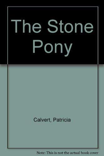 9780684177694: The Stone Pony