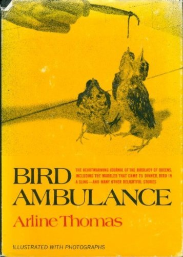 Bird Ambulance: Thomas, Arline