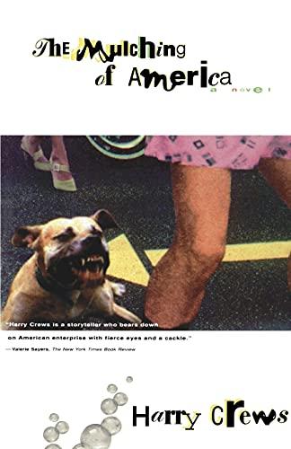 9780684825410: The MULCHING OF AMERICA: A Novel
