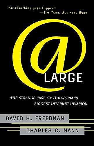 9780684835587: At Large: The Strange Case of the World's Biggest Internet Invasion