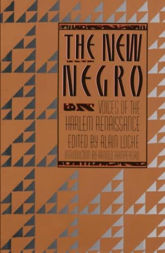 9780684838311: The New Negro