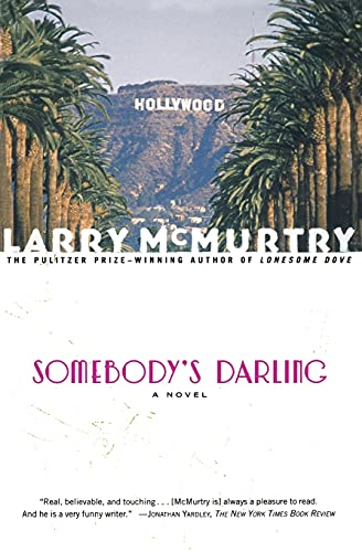 9780684853895: Somebody's Darling : A Novel