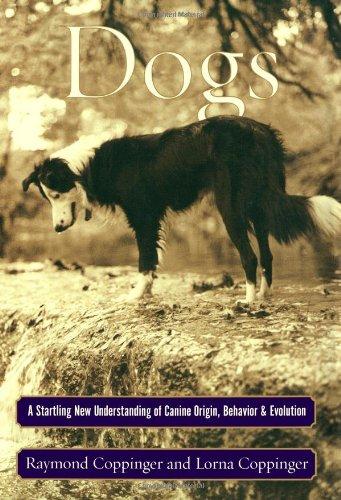 9780684855301: Dogs: A Startling New Understanding of Canine Origin, Behavior, and Evolution