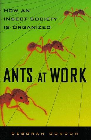 9780684857336: Ants At Work: How An Insect Society Is Organized