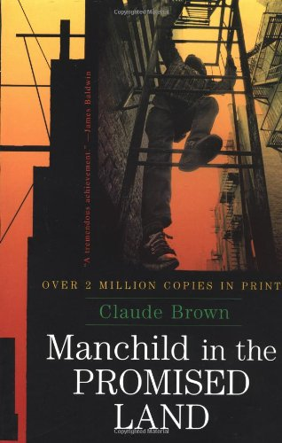 9780684864181: Manchild in the Promised Land