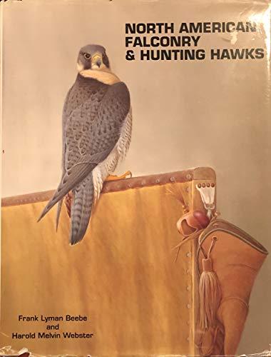 North American Falconry & Hunting Hawks: Frank Beebe