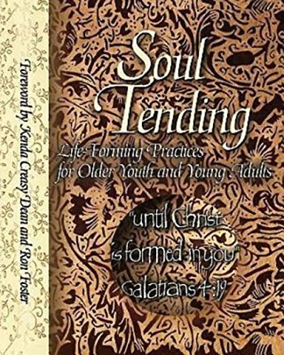 9780687030798: Soul Tending: Life Forming Practices for Older Youth and Young Adults