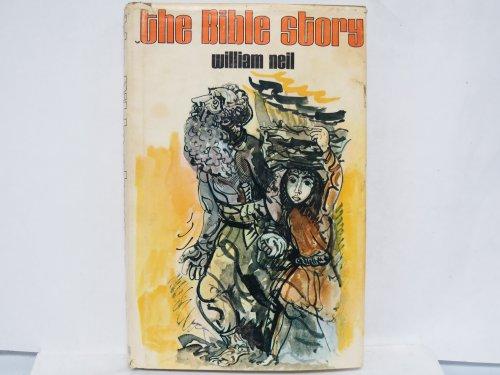 9780687033911: Bible Story