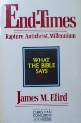 End-Times: Rapture, Antichrist, Millennium (Contemporary Christian Concerns): James M. Efird