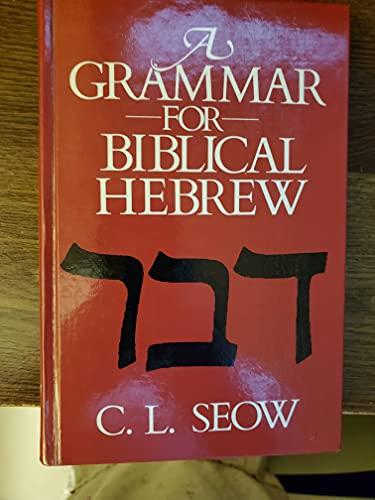 9780687156832: Grammar For Biblical Hebrew Grammar For Biblical Hebrew