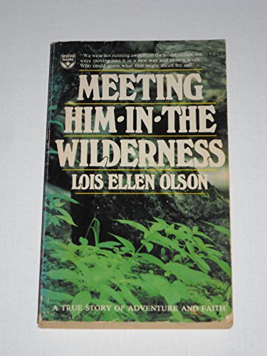 9780687242610: Meeting Him in the Wilderness