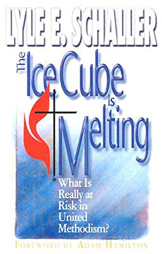 9780687338818: The Ice Cube is Melting: What is Really at Risk in United Methodism?