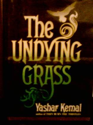 9780688033064: Undying Grass