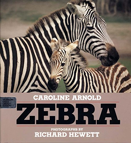 9780688070670: Zebra